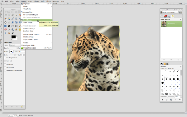 Screenshot shows selecting image print size from menu.